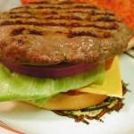 invitro-burger