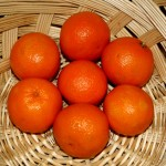 vegan-activism-basket-of-clementines